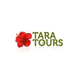 Tara Tours Logo Design Varanasi